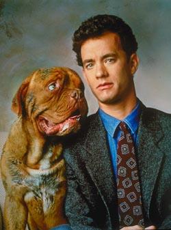 Les chiens célèbres Film91